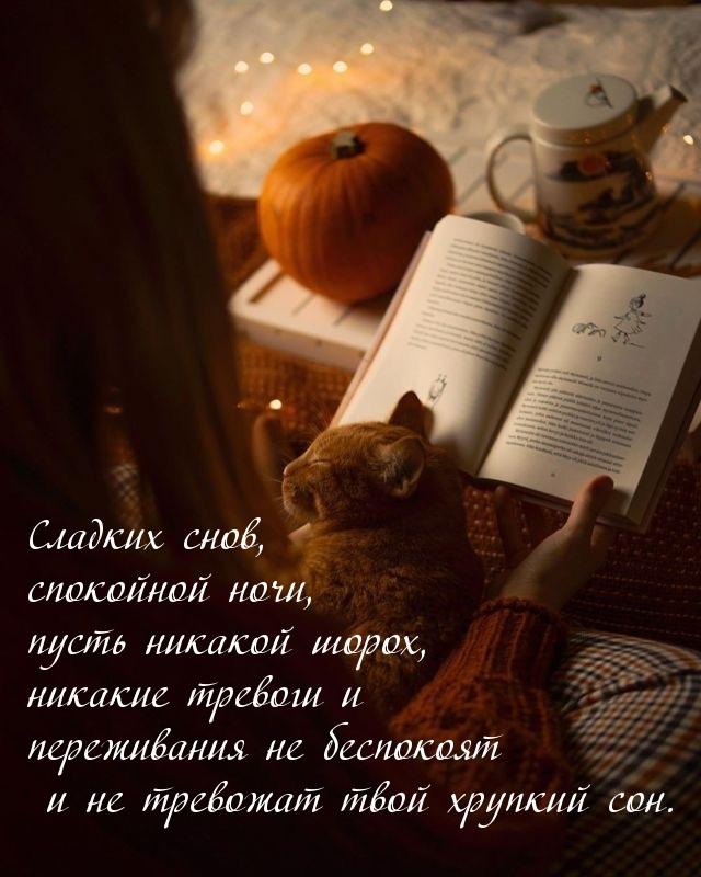 Сладких снов, спокойной ночи